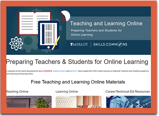 Teaching and Learning Online Portal